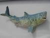 big_shark